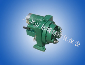 DKJ-310Mtype Electrical Actuator